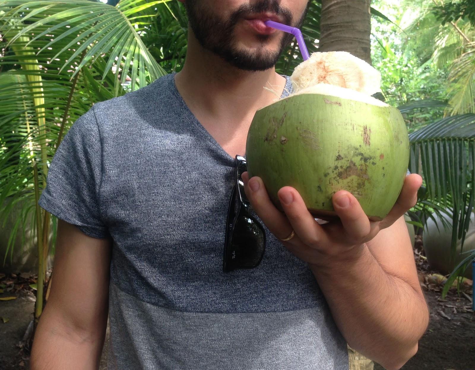 Bangkok guide coconut farm