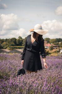 Lavender Fields UK Look
