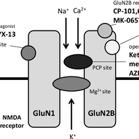 Potential of glutamate-based drug    preview & related info