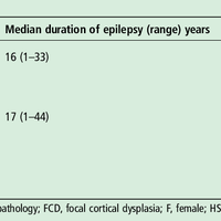 Meyer's loop asymmetry and langua    preview & related info