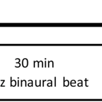 Brain responses to a 6-Hz binaura    preview & related info