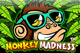 topgame - Monkey Madness