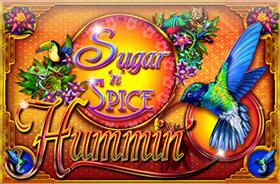 quickfire - Sugar N Spice Hummin
