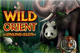microgaming - Wild Orient
