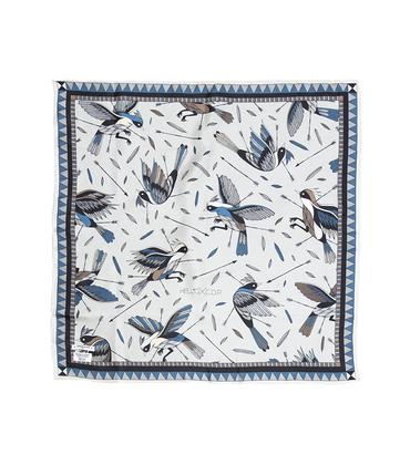 Silk scark Oiseaux