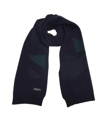 ECHARPE BEAUREPAIRE - Marine/vert