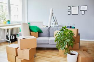 Image de l'article Séniors : quelles solutions pour se loger et déménager ?