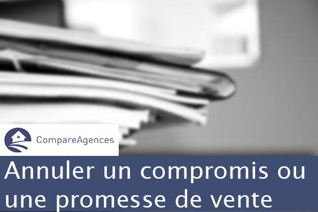 Annuler Un Compromis Ou Une Promesse De Vente Compareagences