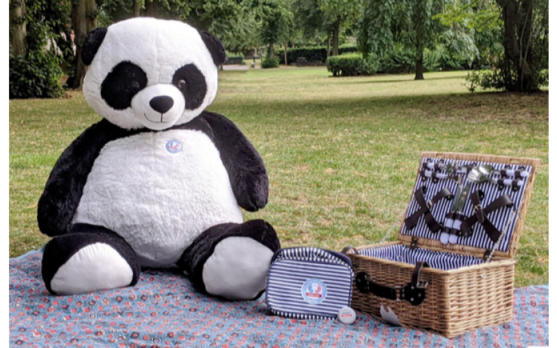 Win a Bespoke Picnic Hamper for 2 from Oliver Bonas including plates and cutlery set and a Giant Cuddly Panda!