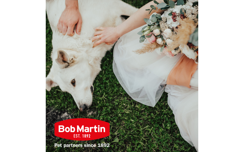 Bob Martin Wellbeing Hamper for your dog