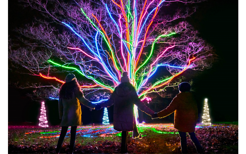 Win a family ticket to a magical Christmas trail