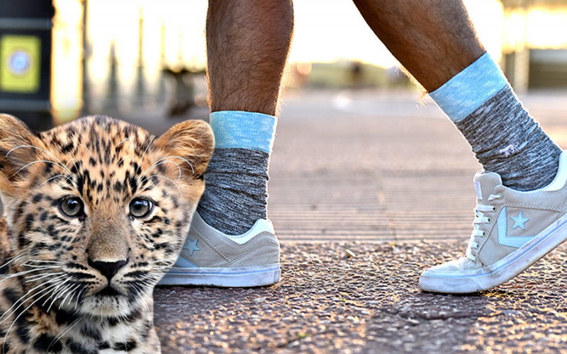 Win 10 pairs of bamboo socks that help endangered animals