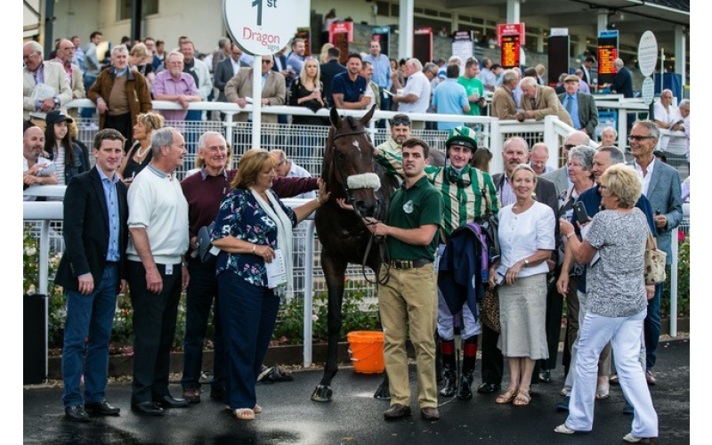 A £500 share in a racehorse