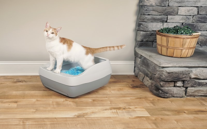 PetSafe® Deluxe Crystal Litter Box System