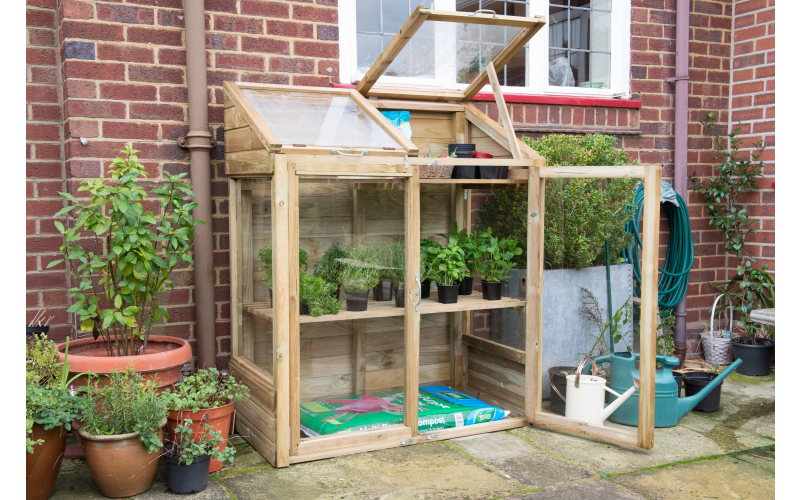 Win a Forest Garden Mini Greenhouse