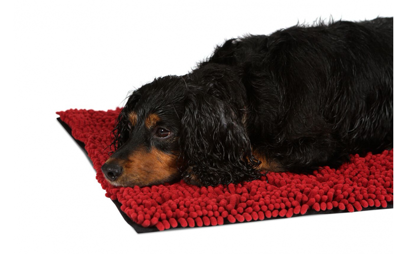 WIN a Scruffs Noodle Dry Mat from Pets Love Scruffs !