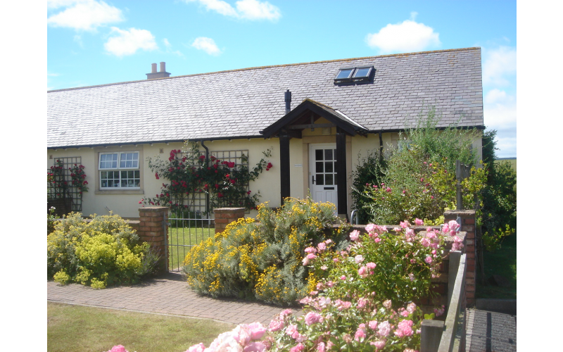 Week for 4 in Cottage on Northumberland Coast