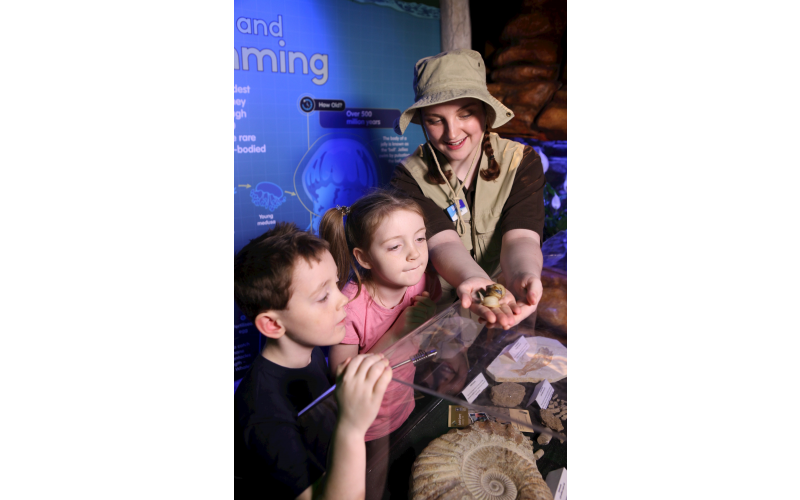 Family Annual Pass to SEA LIFE Manchester and VIP Turtle Feeding Experience