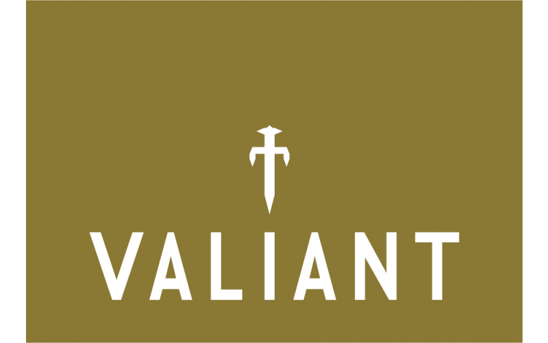 A Valiant BBQ and accessory bundle