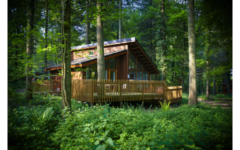 Forest Holidays escape and Archery for Four with Forest of Dean Adventure