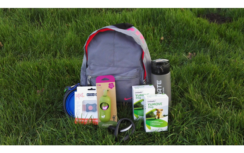 Lintbells Active Kit for you and your dog