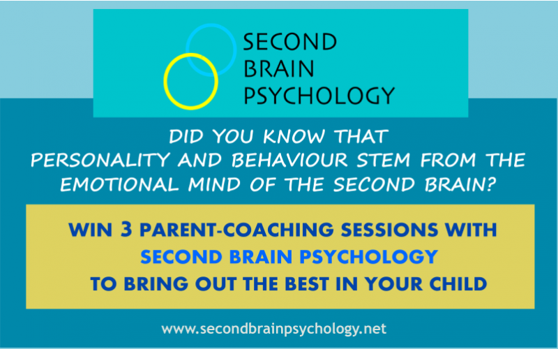 3 PARENT COACHING SESSIONS WITH SECOND BRAIN PSYCHOLOGY