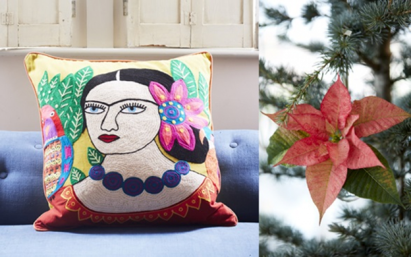 A beautiful poinsettia plant and a vibrantly embroidered Mexicana Large Yellow Cushion from Graham & Green