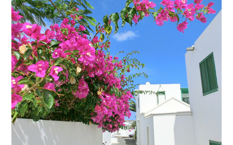 A holiday to Lanzarote