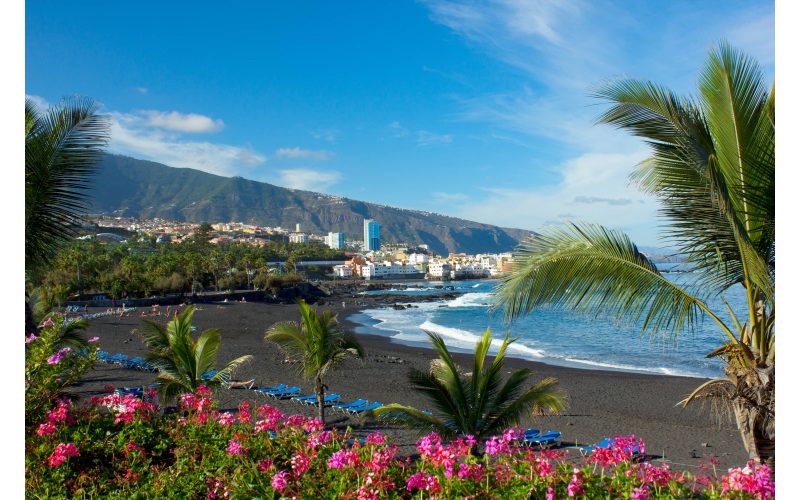 Holiday to Tenerife Enjoy a fresh, virus free home, thanks to Neutradol
