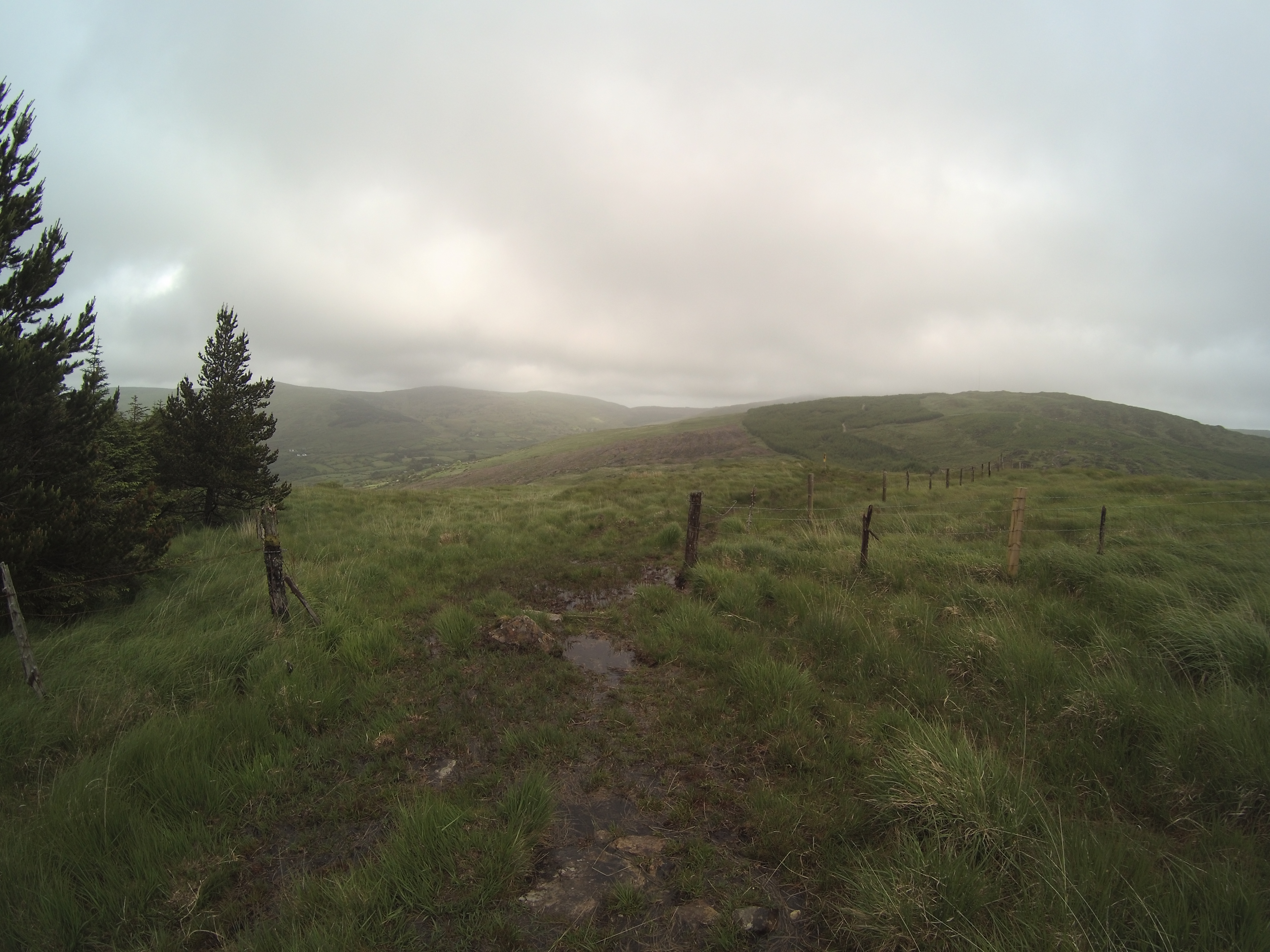 Trail Mid