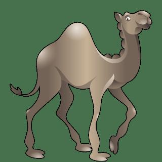 Camel (Grey)