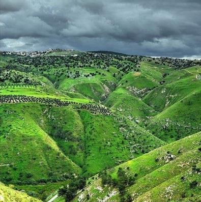 صور ومقاطع نشرها سعودي عن جولاته في الأردن تحظى بتداول واسع بين الأردنيين ويطالبون بتكريمه