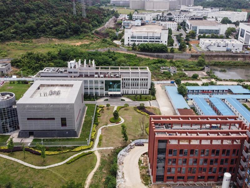 """خبير أمريكي بارز: مصدر فيروس """"كورونا"""" هو مدينة ووهان الصينية"""