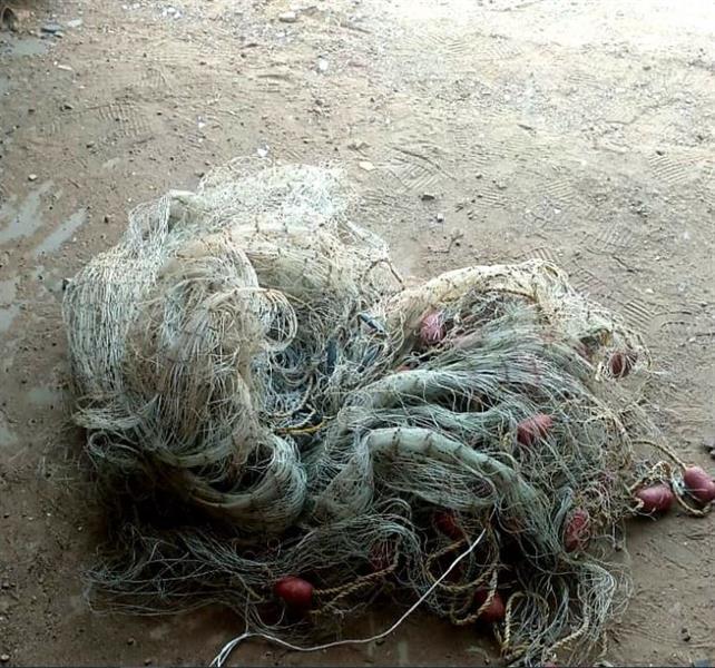ضبط 5 مواطنين و3 مقيمين مخالفين لأنظمة الصيد البحري بمحافظة جدة