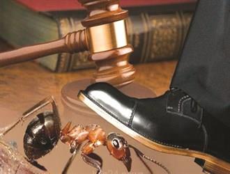 """حقيقة تلقي محكمة عفيف شكوى مواطن ضد وافد دهس """"نملة"""" متعمداً.. وكيفية تعامل القاضي معها"""