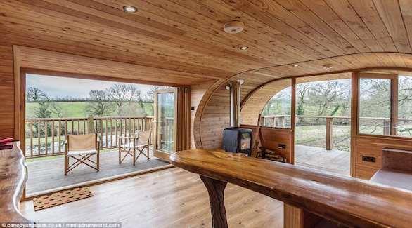 هل هذا أغرب منزل سياحي بني على شجرة في العالم؟