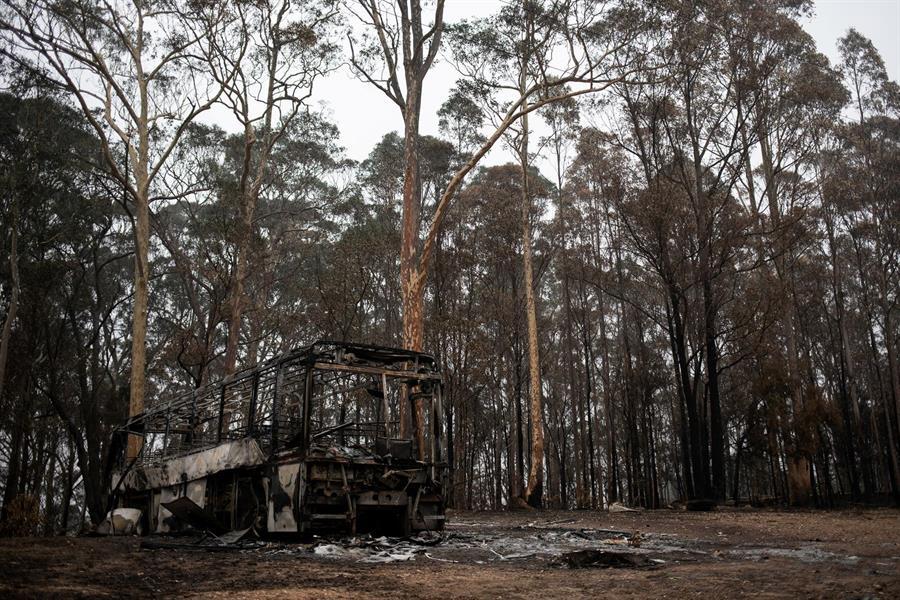 صورة من حرائق استراليا