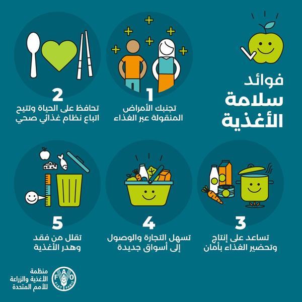 في اليوم العالمي لسلامة الغذاء .. حقائق وأرقام وإرشادات لسلامة الغذاء