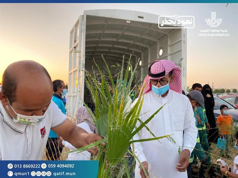 توزيع 1.5 ألف شجرة على مرتادي شاطئ الرملة بالقطيف ضمن مبادرة بيتك أخضر (صور)