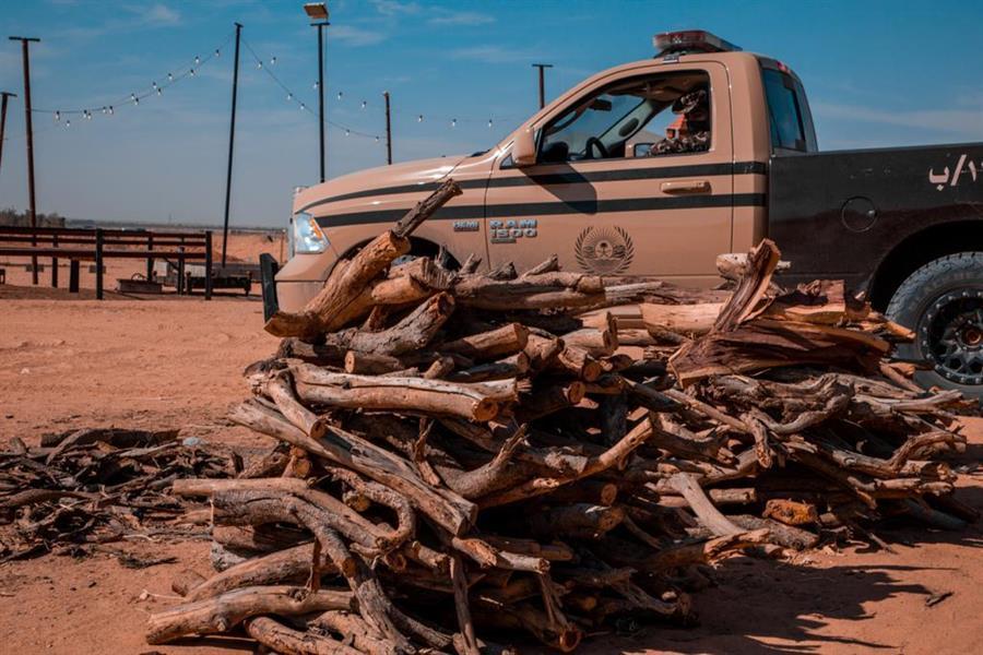 إيقاف 37 مخالفاً لنظام البيئة بحوزتهم 127 طنًا من الحطب المعروض للبيع
