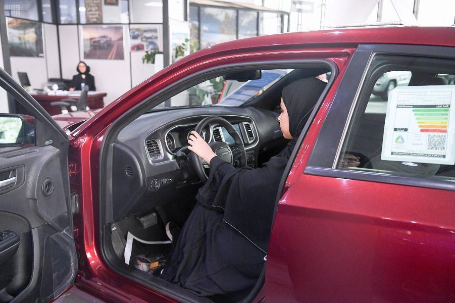 معارض وتوكيلات وشركات السيارات