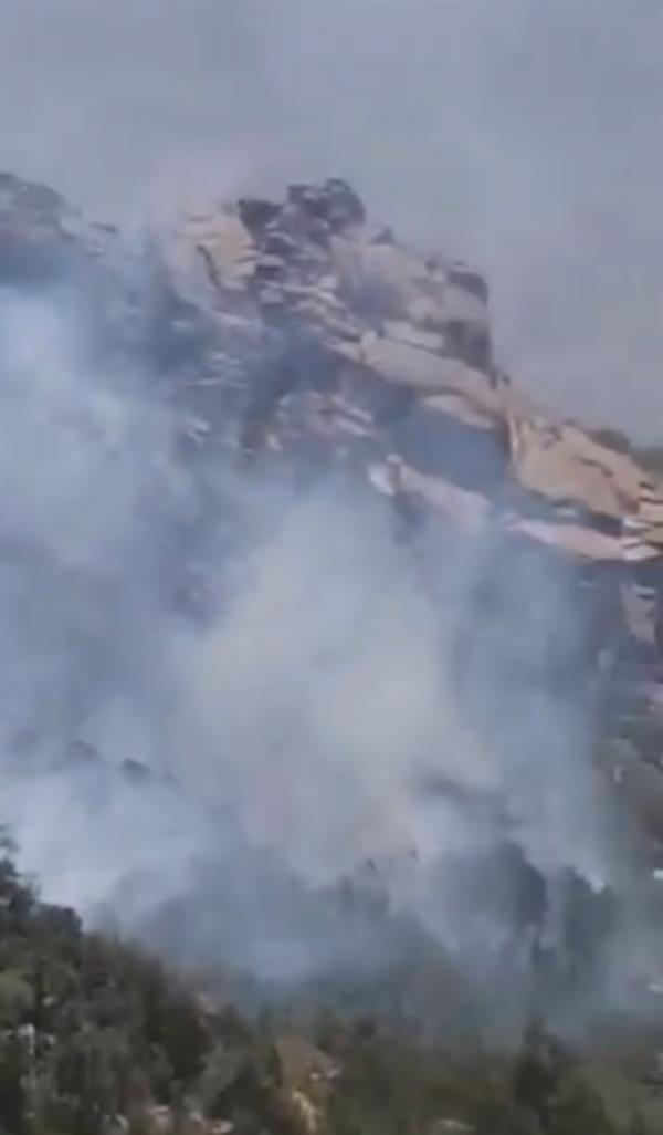 """اندلاع حريق بإحدى الغابات في النماص.. و""""الدفاع المدني"""" يتدخل"""