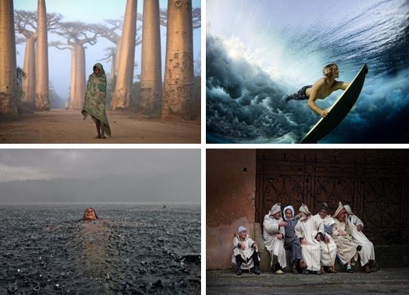 الصور الفائزة
