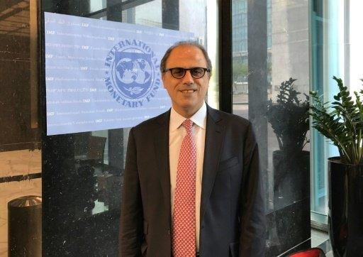 """مدير إقليمي في صندوق النقد يتحدث عن """"رؤية المملكة 2030"""" ويدعو دول الخليج لرفع دعم الوقود"""