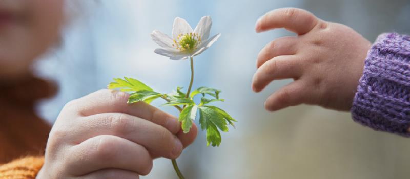 دراسة: الكرم والعطاء يزيدان مشاعر السعادة لدى الإنسان