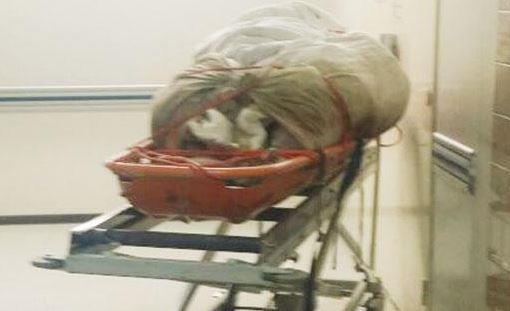 وضع جثة قريبه خارج ثلاجة الموتى