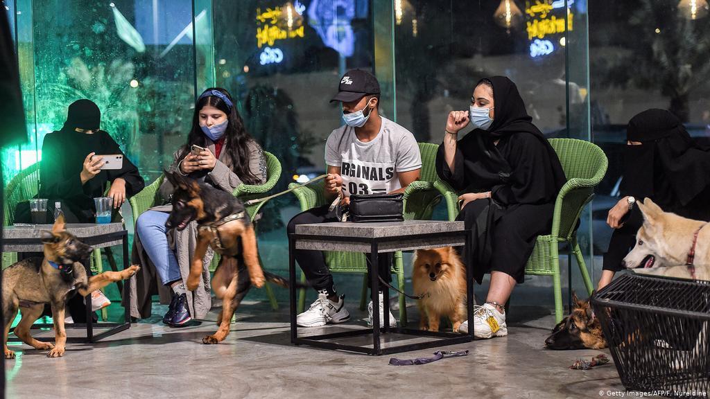 قصة أول مقهى لعشاق الكلاب بالمملكة.. هكذا جاءت الفكرة (فيديو)