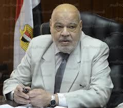 وزير العدل المصرى