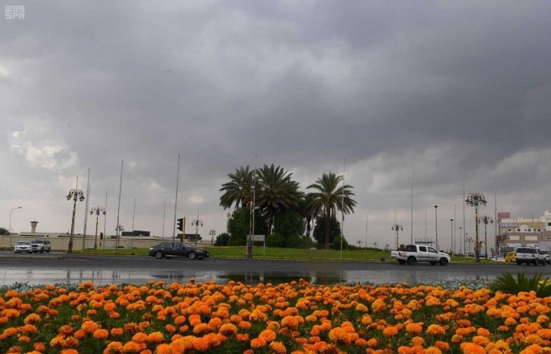 """""""الحصيني"""": الحالة الجوية التاسعة تبدأ غداً بأمطار ديمية ورعدية وموجة برد على هذه المناطق"""