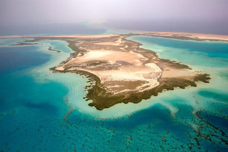 """""""شركة البحر الأحمر"""": لن نمس بـ75% من الجزر.. وسنعتمد على الطاقة المتجددة بنسبة 100%"""